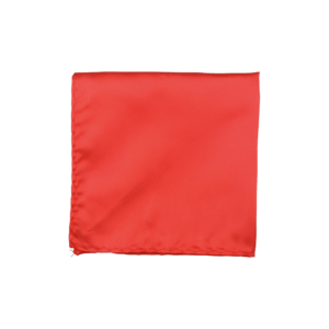 Colour Basis Orange Red Pocket Square