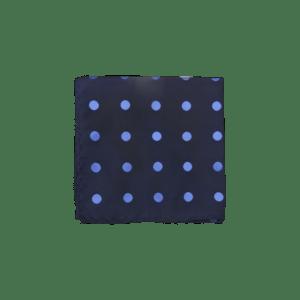 Colour Basis Navy and Blue Polka Dot Pocket Square